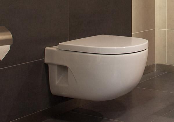 Een toilet wc laten plaatsen in en om delft